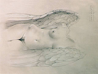Nude Angel Drawing