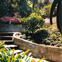Garden and Landscape Design