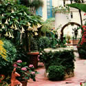Isola Bella Garden - Court Yard
